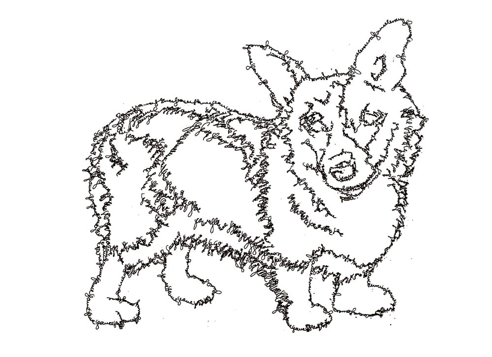 anti art pets line drawings of dogs and cats by brazilian artist