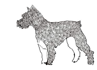 Daisy Dog, line drawing made out of daisies.
