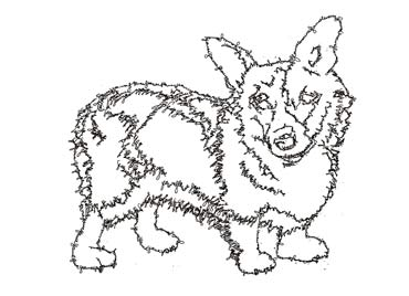Glauce's Corgi, line drawing made out of the artist's signature.